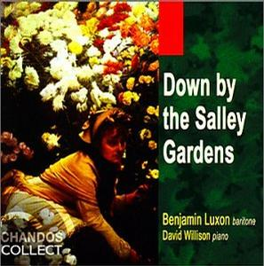 Down By The Salley Gardens(爱