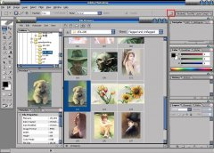 Photoshop CS(PS)简介